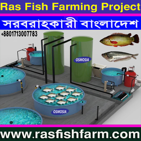 Bangladesh RAS Fish Farming System Suppliers Company, RAS Fish Tank Equipment Supplier Company, RAS Fish Farm Equipment Supplier Company in Bangladesh, RAS Fish Farm Machinery Suppliers Company in Bangladesh, RAS Fish Farm Product Suppliers Company in Bangladesh, RAS Fish Farm Machinery in Bangladesh, RAS Fish Farm Project Machinery in Bangladesh, Mini RAS Fish Farm Project Machinery in Bangladesh, Small RAS Fish Farm Project Machinery in Bangladesh, Indoor Fish Farming Project Machinery in Bangladesh