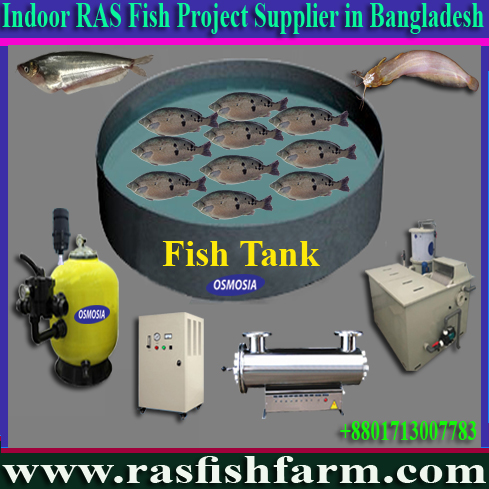 Ras Fish Farm System Suppliers in Iran, Ras Fish Farm System Suppliers in Saudi Arabia, Ras Fish Farm g System Suppliers in Gulf Country, Ras Fish Farm System Suppliers in Africa, Ras Fish Farm System Equipment Suppliers in Africa, Ras Fish Farm System Equipment Suppliers in Pakistan, Ras Fish Farm Systems Equipment Suppliers in China, Ras Fish Farm System Equipment Suppliers in India, Ras Fish Farm System, Ras Fish Farm Systems in Bangladesh, Ras Fish Farm Systems Price in Bangladesh, Ras Fish Farm System Suppliers in Bangladesh