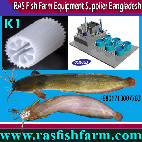 Ras Fish Farm System Equipment Suppliers in China, Ras Fish Farm System Equipment Suppliers in India, Ras Fish Oxygen Equipment Supplier in Bangladesh, Ras Fish Farming Oxygen Equipment Suppliers in Bangladesh, Ras Fish Farming Oxygen System Supplier in Bangladesh, Ras Fish Farming Projects, Ras Fish Farming Projects in Bangladesh, Ras Fish Farming Projects Price in Bangladesh, Ras Fish Farming Project Suppliers in Bangladesh, Ras Fish Farming Project Suppliers in Iran, Ras Fish Farming Project Suppliers in Saudi Arabia