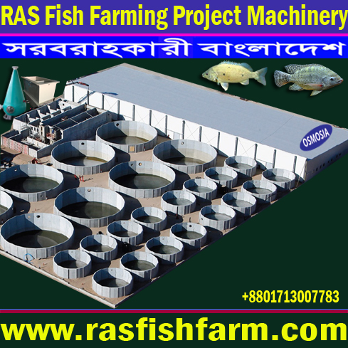 Ras Fish Farming Project Equipment Suppliers in India, Ras Fish Farming System, Ras Fish Farming System in Bangladesh, Ras Fish Farming System Price in Bangladesh, Ras Fish Farming System Suppliers in Bangladesh, Ras Fish Farming System Supplier in Iran, Ras Fish Farming System Supplier in Saudi Arabia, Ras Fish Farming System Suppliers in Gulf Country, Ras Fish Farming System Supplier in Africa, Ras Fish Farming System Equipment Suppliers in Africa, Ras Fish Farming System Equipment Supplier in Pakistan