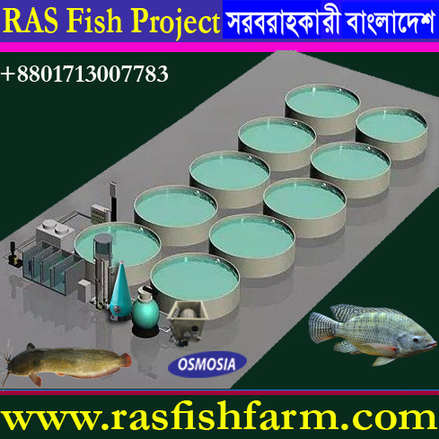 Ras Fish Farming System Equipment Supplier in China, Ras Fish Farming System Equipment Supplier in India, Ras Fish Farm System, Ras Fish Farm System in Bangladesh, Ras Fish Farm System Price in Bangladesh, Ras Fish Farm System Supplier in Bangladesh, Ras Fish Farm System Suppliers in Iran, Ras Fish Farm System Supplier in Saudi Arabia, Ras Fish Farm g System Suppliers in Gulf Country, Ras Fish Farm System Supplier in Africa, Ras Fish Farm System Equipment Supplier in Africa, Ras Fish Farm System Equipment Supplier in Pakistan