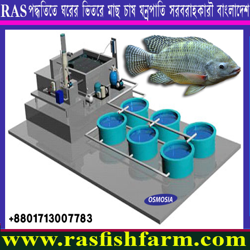 Ras Fish Farm System Equipment Suppliers in China, Ras Fish Farm System Equipment Suppliers in India, Ras Fish Farm System, Ras Fish Farm System in Bangladesh, Ras Fish Farm System Price in Bangladesh, Ras Fish Farm System Suppliers in Bangladesh, Ras Fish Farm System Supplier in Iran, Ras Fish Farm System Suppliers in Saudi Arabia, Ras Fish Farm System Supplier in Gulf Country, Ras Fish Farm System Supplier in Africa, Ras Fish Farm System Equipment Supplier in Africa, Ras Fish Farm Equipment Supplier in India