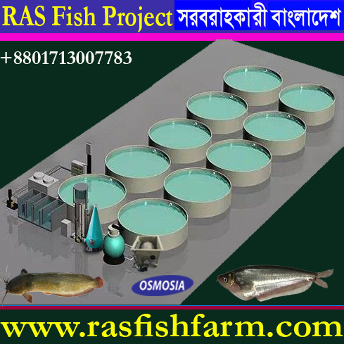 Ras Catfish Farming Machinery Supplier Company in Bangladesh, Ras Catfish Farming Machinery Suppliers Companies in Bangladesh, Ras Catfish Farming Machinery Supply Company in Bangladesh,  Jade Perch Fish Farming Machinery Supply Company in Bangladesh, Koi Fish Farming Machinery Supply Company in Bangladesh, Aquaculture Koi Fish Farming Machinery Supply Company in Bangladesh, Aquaculture Koi Fish Pond Machinery Suppliers Company in Bangladesh