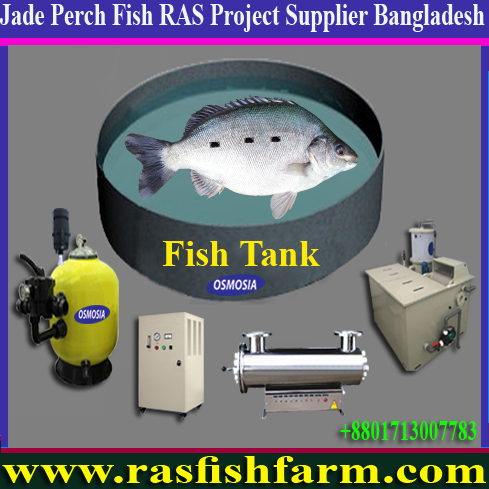 Ras Fish Farming Project Suppliers in Gulf Country, Ras Fish Farming Project Suppliers in Africa, Ras Fish Farming Project Equipment Suppliers in Africa, Ras Fish Farming Project Equipment Suppliers in Pakistan, Ras Fish Farming Project Equipment Suppliers in China, Ras Fish Farming Project Equipment Suppliers in India, Ras Fish Farming Systems, Ras Fish Farming Systems in Bangladesh, Ras Fish Farming Systems Price in Bangladesh, Ras Fish Farming Systems Suppliers in Bangladesh, Ras Fish Farming System Suppliers in Iran