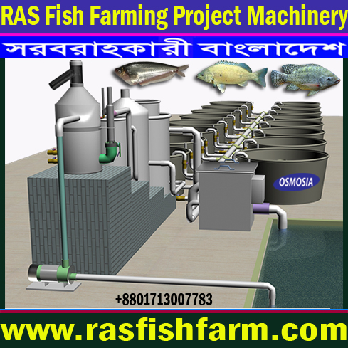 Ras Fish Farm System Suppliers in Iran, Ras Fish Farm System Suppliers in Saudi Arabia, Ras Fish Farm System Suppliers in Gulf Country, Ras Fish Farm System Suppliers in Africa, Ras Fish Farm System Equipment Suppliers in Africa, Ras Fish Farm System Equipment Suppliers in Pakistan, Ras Fish Farm Systems Equipment Suppliers in China, Ras Fish Farm System Equipment Suppliers in India, Ras Fish Oxygen Equipment Suppliers in Bangladesh, Ras Fish Farming Oxygen Equipment Suppliers in Bangladesh, Ras Fish Farming Oxygen System Suppliers in Bangladesh