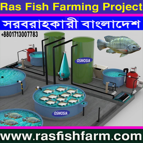 Ras Indoor Fish Farming Machinery Manufacturer Bangladesh, Ras Indoor Fish Farming System Manufacturer Bangladesh, RAS/ Recirculating Aquaculture System Manufacturer Bangladesh, RAS/ Recirculating Aquaculture Fish Farming Systems Manufacturer Bangladesh, RAS/ Recirculating Aquaculture Fish Farming Project Machinery Manufacturer Bangladesh, Aquaculture Fish Pond Equipment Supplier Company in Bangladesh, Aquaculture Ras Fish Pond Equipment Suppliers Company in Bangladesh